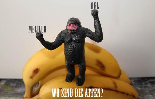 Wo sind die Affen600